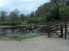 Bolton Abbey 6